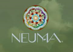 ~Beautiful Sustainable~ Discover more at Neumabeauty.com